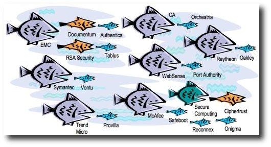 DLP_fish_